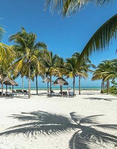 Isla Holbox Beaches are magnificent #holbox