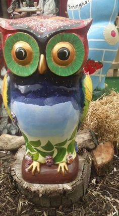 One of Sutton Coldfields Big Hoot Owls. raised 6,535 pounds at the auction