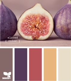 Palette - sliced color ||||| LOVE this color combo.