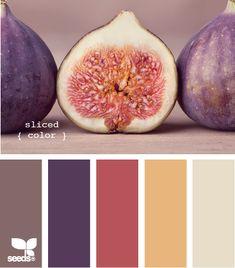 Pretty Fig Tones: Plum, Dusty Purple, Mauve, Tawny Yellow and Tan