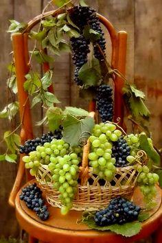Beautiful Fruits, Beautiful Flowers, Peach Fruit, Fruit Photography, Food Wallpaper, Wine Decor, Weird Food, Fruit Garden, Fruit Art