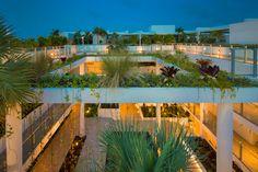 Raymond Jungles » Palau Sunset Harbour