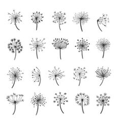Find out how to draw a dandelion. We love flower doodles and the dandelion doodle is a simple drawing to try. Doodle Drawings, Doodle Art, Dandelion Drawing, Dandelion Tattoo Small, Dandelion Tattoo Design, Dandelion Designs, Dandelion Flower, Petit Tattoo, Illustration Vector