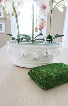 Green moss sheet for orchid arrangement