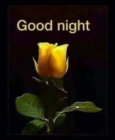 Good Night Greetings, Good Night Wishes, Good Night Sweet Dreams, Good Morning Good Night, Romantic Good Night Image, Good Night Images Hd, Good Morning Beautiful Images, Morning Images, Beautiful Ladies