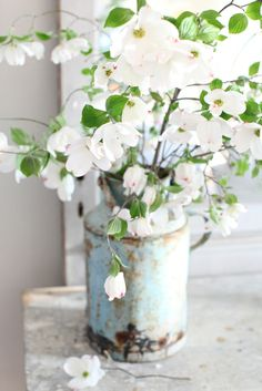 Farmhouse canister filled with dogwood