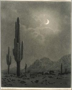 'New Moon and Evening Star, Phoenix', by George Elbert Burr.  1859-1939     Drypoint