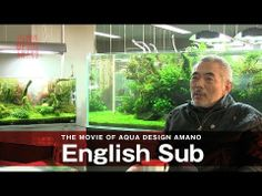 ▶ [ADAview] THE MOVIE OF AQUA DESIGN AMANO [side:concept] -English sub. - YouTube