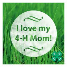 love my 4h mom.