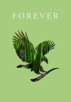 Forever Living has the highest quality aloe vera products and is recognized as the world's leading multi-level marketing opportunity (FBO) for forty years! Forever Living Aloe Vera, Forever Aloe, My Forever, Forever Young, Aloe Benefits, Kundalini Yoga Poses, Forever Freedom, Forever Living Business, Natural Aloe Vera