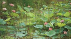 Lotus by Joke Frima Lotus Art, Landscaping Near Me, Plant Painting, Flower Bird, Lotus Flower, Historical Art, Naive Art, Illustrations And Posters, Beautiful Artwork