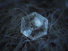 クローズアップスノーフレーク画像:ヘックスアピール、自然光の暗い質感の背景に輝く、美しい透明性を持つ六角形のプレート