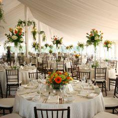 Flowers, Reception, Centerpiece, Decor, Tent, Laura davis events