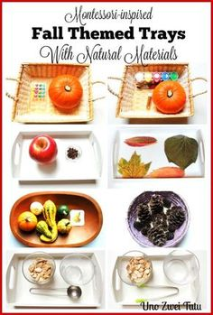 11 Montessori inspired activities with natural fall materials. Montessori-inspired trays for toddlers and preschoolers.