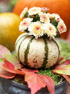 Gorgeous Gourd Vase -   Tuck a dainty nosegay of mums into a tiny gourd or squash for each guest at your table.
