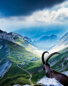 Mount Pilatus,Switzerland: