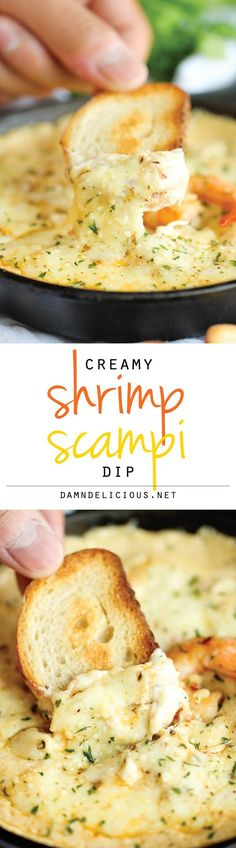 Shrimp Scampi Dip - Your favorite pasta in creamy cheesy dip form! It's so good…