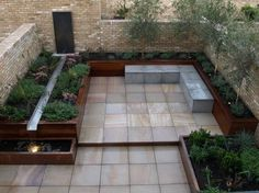 terrasse dans l'arrière-cour avec cascade, plantes basses et oliviers