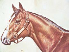 Vintage Horse Print - Northern Dancer Print - Derby Horse Print - Thoroughbred Print - Richard Stone Reeves - Signed Vintage Equestrian Art