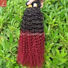 #1b/bug,black burgundy ombre hair weaves, curly wave two tone Brazilian hair,shop from www.latesthair.com/ Latest Hairstyles, Weave Hairstyles, Blond, Ombre Hair Weave, Ombre Human Hair Extensions, Nail Tattoo, Hair Shop, Hair Weaves, Stretched Ears