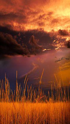 ~~Colorado ~ dramatic clouds over a golden field | Longmont, Colorado by Gray Artus~~