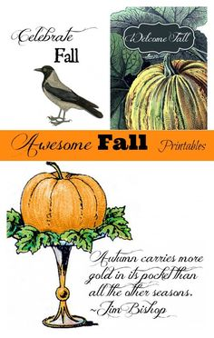 Free fall printables. Fill your photo frames with free fall printables! A quick seasonal change. Get a head start on your Farmhouse Fall Decor. Free and easy.