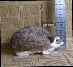 49.00$  Watch now - http://alihkr.worldwells.pw/go.php?t=32738194486 - simulation Hedgehog toy model about 20x9x10cm ,polyethylene&fur hedgehog handicraft toy decoration Xmas gift b38213