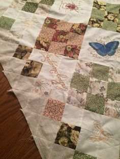 Entomology Quilt - The study of bugs!
