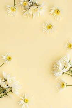 Styled Floral Images