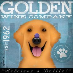 Golden Retriever dog Wine Company original illustration graphic artwork on canvas 12 x 12 by stephen fowler