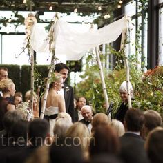 More traditional birch branch chuppah, but still lovely with the low-hanging cloth and the leaves!