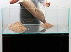A thoroughly modern aquascape - Practical Fishkeeping Betta Fish Tank, Aquarium Fish Tank, Planted Aquarium, Fish Tanks, Home Aquarium, Aquarium Ideas, Rock Decor, Aquatic Plants, Small World