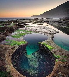 Royal National Park Australia