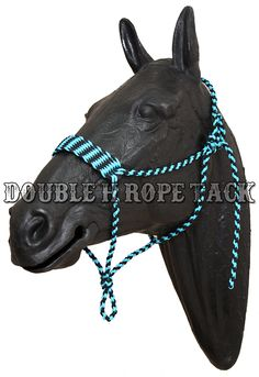 Wide Noseband Paracord Halter … Horse Gear, Horse Tack, Pretty Horses, Beautiful Horses, Paracord Dog Leash, Barrel Racing Saddles, Rope Halter, Horse Halters, Cowgirl And Horse