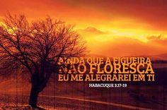 Deus maravilhoso,,,, Príncipe da paz,,,,, Bom dia,,,,