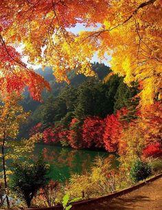 Beautiful Fall Colors in Inagakko, Japan