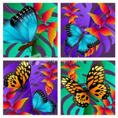 tropical butterflies beautiful as was our angel Aliyah Destiny Lynn.  We all love you, little butterfly!