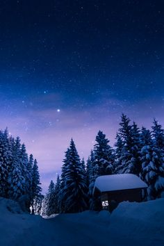 mstrkrftz: Rila mountain, Bulgaria by Xiao Yang Snow Forest, Night Forest, Bulgaria, Wonderful Places, Beautiful Places, Painting Snow, Forest House, Stars At Night, Portugal