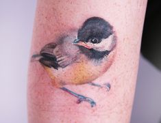 BIRD TATTOO BY AMANDA WACHOB