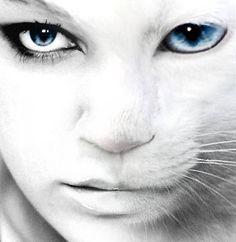 half human, half feline                                                                                                                                                                                 Plus