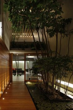Transparent greenhouse with a cool atmosphere by Hernandez Silva Arquitectos garden design architecture internal courtyard Transparent greenhouse with a cool atmosphere