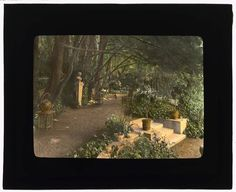 Amazing photo collection of Southern California gardens (and more) at turn of 20th Century  I came across mention of this new online collection from the Library of Congress via this Metafilter post — The Lantern Slides of Frances Benjamin Johnston. What immediately caught my  attention were all the shots of Southern California, including some areas I visit on a regular basis. It is amazing to see what was once there and, in one case, still remains.