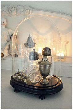 Cabinet de curiosités avec pièces anciennes en verre sous cloche