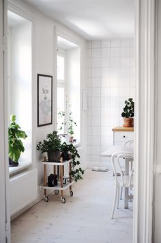 White kitchen with greenery