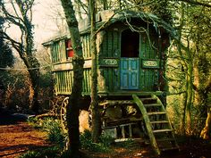 wooded sunlight on a wagon