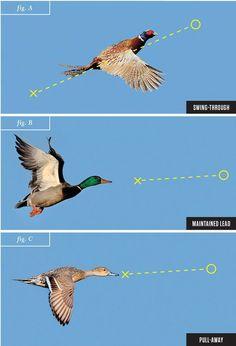 shotgun techniques, wingshooting, duck hunting, shooting ducks, leads, skeet shooting #pheasanthunting