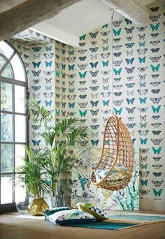 Muchas mariposas