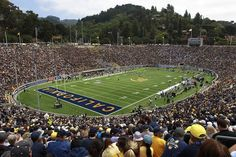 UC Berkeley - Cal football! Go Bears!