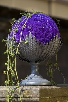 This would make an absolutely delightful Foot Ball trophy of #flowers