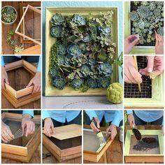 How To DIY Make Framed Living Succulent Art